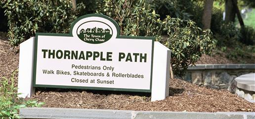 Thornapple Path